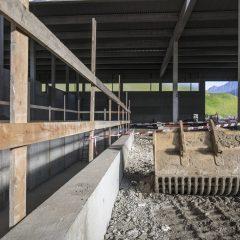 Discarica Aosta_13-11-2020_PH Stefano Jeantet-45